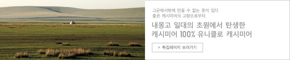 캐미시어 특집 페이지 보러가기