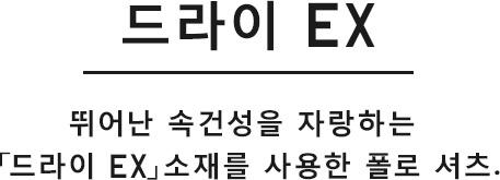 드라이 EX