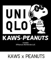 kaws x peanuts
